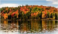 Gatineau Park Fall Tour