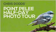 Point Pelee: Half-Day Wildlife Photo Tour with Christopher Dodds