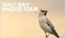 Zoo Photo Tour
