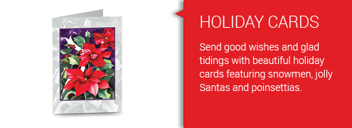 Banners_Set01_Redblock_495x180_7-Holiday Cards.jpg