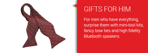 Banners_Set01_Redblock_495x180_6-Gifts for Him.jpg