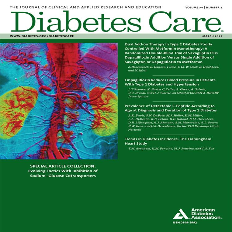 diabetes clinical practice guidelines 2015