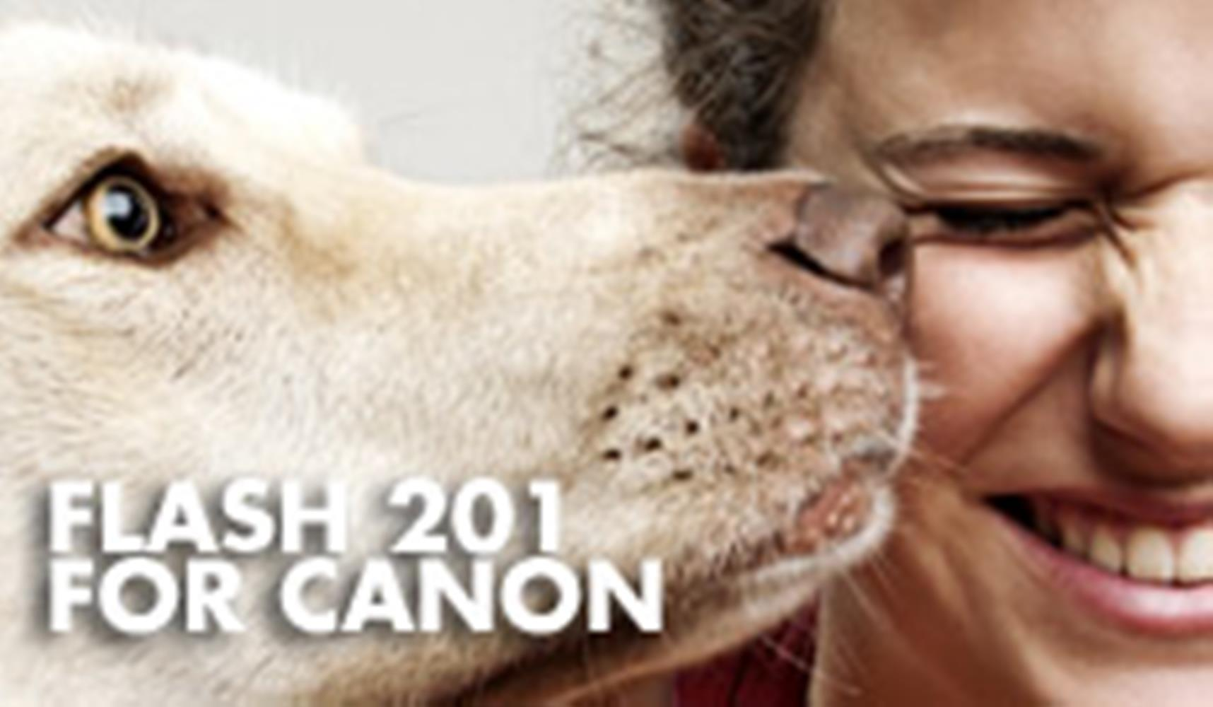 Flash 201 for Canon