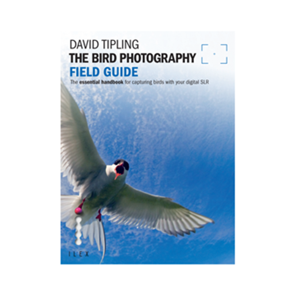 THE BIRD PHOTOGRAPHY FIELD GUIDE FREEMAN